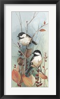 New Chickadee II Fine Art Print