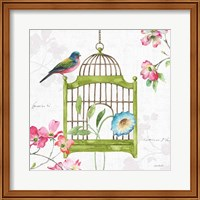 Dogwood Garden V Fine Art Print