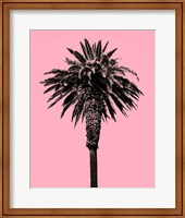 Palm Tree 1996 (Pink) Fine Art Print