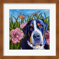Dog and Dragonflies Fine Art Print