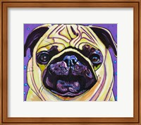 Purple Pug Fine Art Print