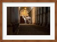 In The Barn Fine Art Print