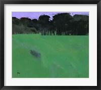 Dark Grove Fine Art Print
