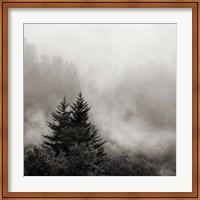 Rising Mist, Smoky Mountains Fine Art Print
