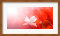 Lotus in Flames Fine Art Print