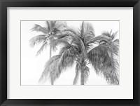 Breezy IV Fine Art Print
