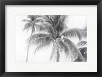 Breezy II Fine Art Print