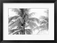 Breezy I Fine Art Print