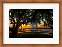 Savannah Evening Fine Art Print