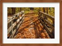 Fall On The Footbridge Fine Art Print