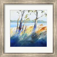 Murray River Bank Fine Art Print