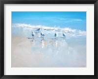 Sorrento Gulls Fine Art Print