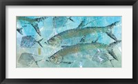 Tarpon Lagoon Fine Art Print