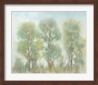 Muted Trees I Fine Art Print