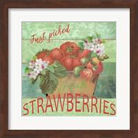 Farmers Market Strawberries Fine Art Print