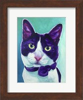 Cat - Sniffles Fine Art Print