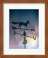 Rain On The Old Fox Weather Vane Fine Art Print