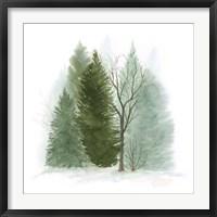 Walk in the Woods II Fine Art Print