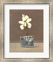 Orchids in Glass Fine Art Print