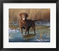 Top Dog Fine Art Print