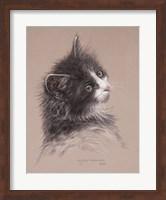 Pretty Kitty Fine Art Print