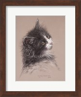 Pretty Kitty Fine Art Print