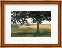 Hidden Pasture Fine Art Print