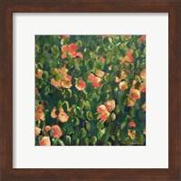 Apple Tree II Fine Art Print