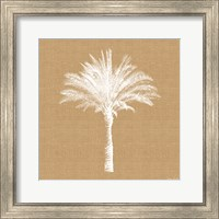 Burlap Palm Tree Fine Art Print