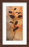 Flora II Fine Art Print