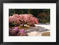 A Cherry Tree Blossoms Over A Rock Garden In The Japanese Gardens In Portland's Washington Park, Oregon Fine Art Print