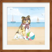 Summer Paws V No Words Fine Art Print