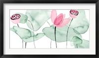 Lotus in Nature II Fine Art Print