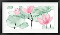 Lotus in Nature III Fine Art Print