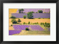 France, Provence, Sault Plateau Overview Of Lavender Crop Patterns And Wheat Fields Fine Art Print