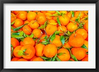 Oranges Displayed In Market In Shepherd's Bush, Londo Fine Art Print