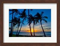 Sunset And Silhouetted Palm Trees, Kihei, Maui, Hawaii Fine Art Print