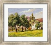 California Spring Fine Art Print
