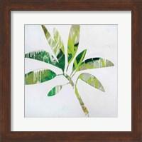 Tropical Landscape IV Fine Art Print
