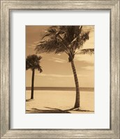Palm Beach I Fine Art Print