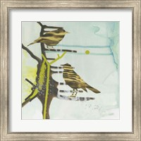 Chit, Chat, Chirp Fine Art Print