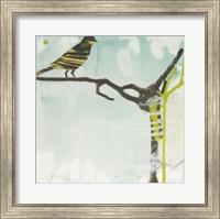 Early Bird Fine Art Print