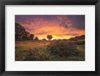 From the Netherlands with Love Fine Art Print