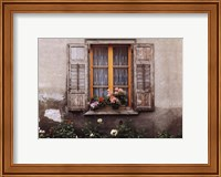 Swiss Lace Fine Art Print