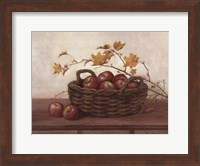 Winesap and Maples Fine Art Print