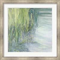 Sweetgrass Fine Art Print