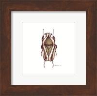 Bug #10 Fine Art Print