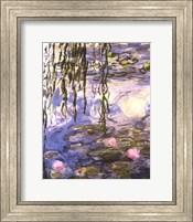 Waterlilies (pink flowers) Fine Art Print