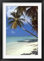 Tropical Beach Wall Poster
