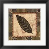 Tropical Leaf III Fine Art Print